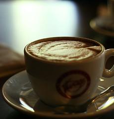 doublecap2 (LiveSpecimen) Tags: seattle coffee espresso cappuccino espressovivace doublecappuccino