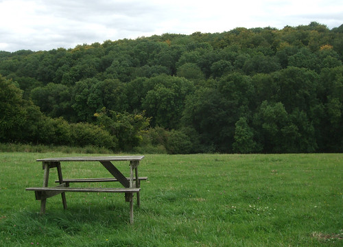bellingdonbench