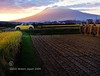 Iwaki Sunset. Featuring Daihatsu Copen. (Hirosaki Japan). © Glenn Waters. Japan. Over 16,000 visits to this photo.  Thank you. (Glenn Waters ぐれんin Japan.) Tags: sunset sky mountain art cars sports field car yellow japan clouds volcano countryside nikon open rice paddy farm 110 harvest explore toyota getty hirosaki sportscar iwaki cabriolet daihatsu 田んぼ convertable copen opencar 火山 黄色 弘前 岩木山 青森県 explored japanesecar ニコン d700 ダイハツ homersiliad ぐれん glennwaters コペン
