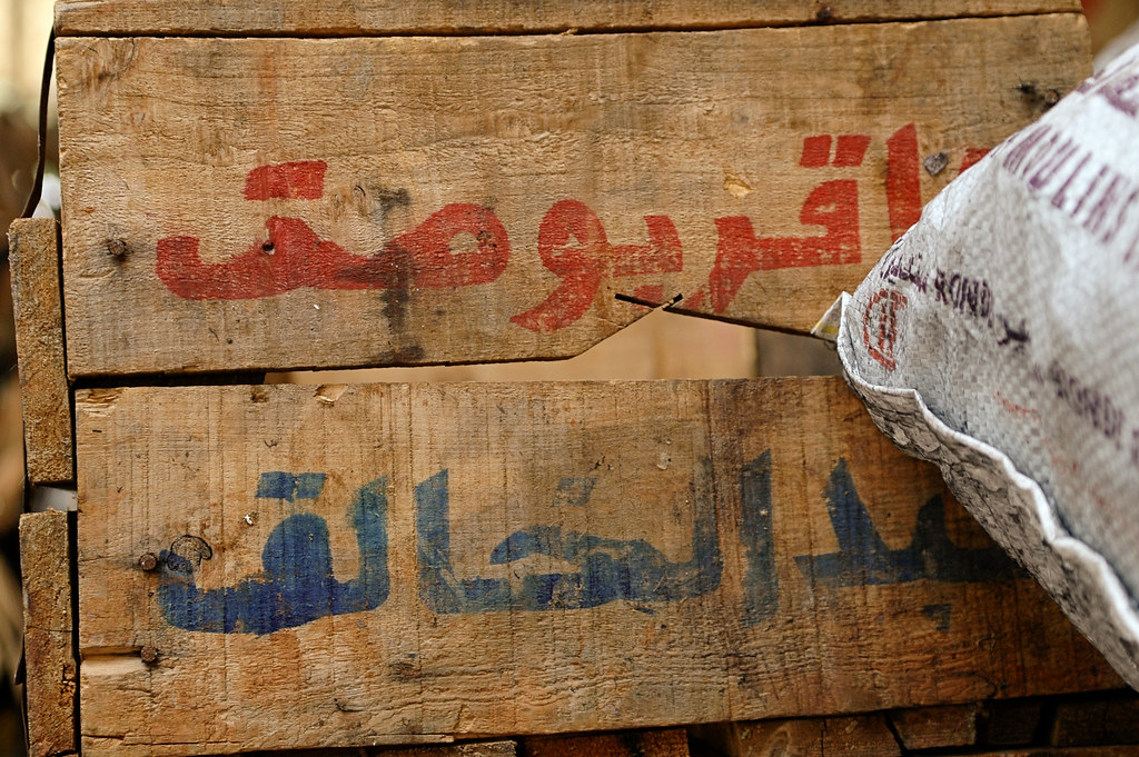 Arabic Script