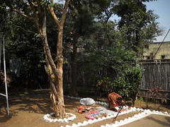 Time for Cracker display, Diwali celebration with family : Sarni, Madhya Pradesh, India (dushyant_fst) Tags: india lakshmi deep firework festivaloflight monika ganesh cracker diwali hinduism crackers deepawali rangoli ganeshji 429 superd sarni goddessofwealth lakshmiji subhdiwali dushyantgadewal shobharamgadewal manjulatagadewal