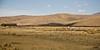 Plaine dont la contamination fait qu'elle ne verdit plus pendant la saison des pluies. Les éleveurs emmènent les troupeaux pêtre de plus en plus loin (Crucero, Puno, Pérou, août 2009)
