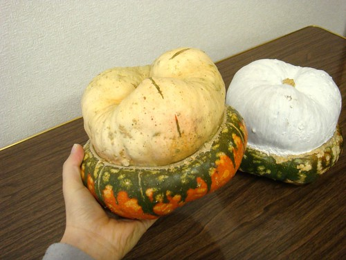 おかめかぼちゃ
