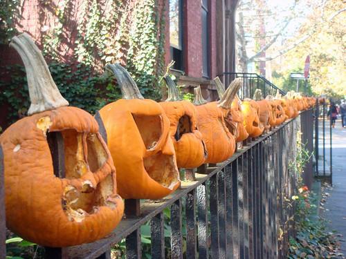 kane street pumpkins