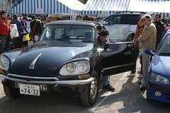 IMGP5959