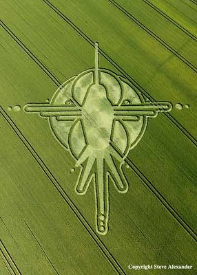 Hummingbird+Crop+Circle