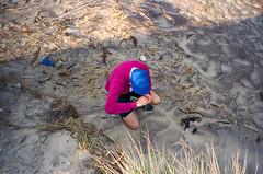 (Levi Mandel (sea kay)) Tags: ny film beach kids brooklyn 35mm fun spring weed jake wind smoke dunes scan pot drugs