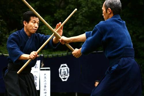 Liev Martial Arts #6 REV