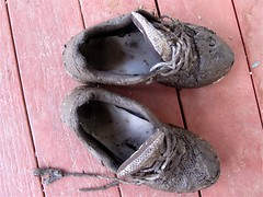 2009/365/143 Dress Shoes