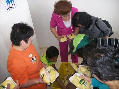 rebutan durian