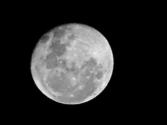 The Moon - 9 June 2009 (JamesDPhotography) Tags: light sky moon white black night lune dark earth space australian australia melbourne luna crescent full galaxy crater astrophotography half planet lua planets astronomy moons galaxies universe lunar cosmos moonscape waxing solarsystem might waning panasoniclumix tonightsmoon moonwatch fz18 melbournephotographer jamesdemetrie