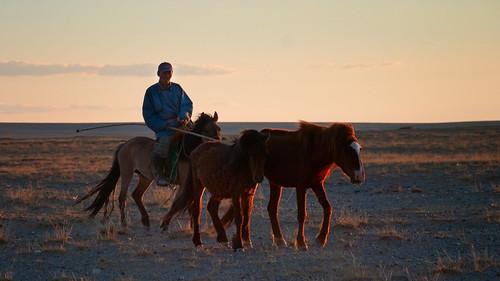 Gobi Desert 11