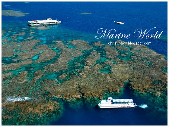 Cairns: Marine World
