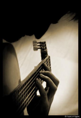 Salvo guitar