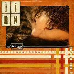 Jinx (easyqueenie) Tags: scrapbook jinx catsleeping