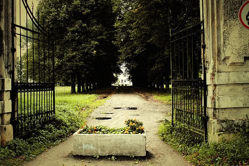 Dvaro vartai