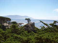 Lone Cypress, 17 mile drive (mademcod) Tags: ocean clouds coast seascapes pacific bigsur pointlobos centralcaliforniacoast