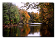 (Indiana Ivy Nature Photographer) Tags: county usa lake color art fall 20d nature digital canon psp photography artwork october state photos canon20d lakes ivy indiana painter prints greene 2009 linton corelpainter corel naturephotography greenecounty naturephotographer kardokus indianaivy indianaivysnaturephotography