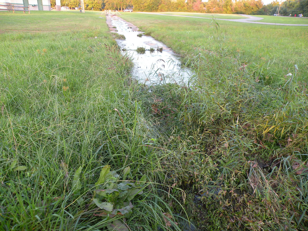 DSCN7875 City Park Department leases this wet prairie from university for soccer field. A straight concrete ditch prevents water from soaking in and increases downstream flooding after water enters Hamestring Creek