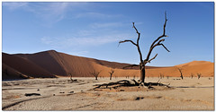 Dead Vlei Panorama (Panorama Paul) Tags: panorama sesriem namibia sossusvlei deadvlei namibdesert nohdr sigmalenses nikfilters nikond300 wwwpaulbruinscoza paulbruinsphotography