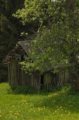 Abandoned shed (Guido de Kleijn) Tags: de shed schwarzwald blackforest guido schwarzenberg silberberg baiersbronn kleijn huzenbach