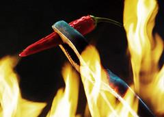 red hot (tobias f.) Tags: light red black hot color colour rot umbrella dark ed fire chili pentax 360 fresh da peppers kit 300 af 500 55 nano feuer smc schwarz 001 ld pepperoni trigger 190 manfrotto ftz af360fgz k10d pentaxk10d af500ftz fgz