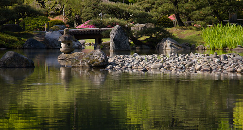 Japanese Garden in May