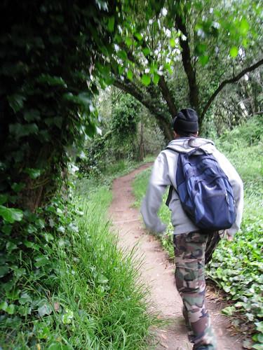 Hiking at Mt. Tamalpais