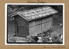 Horreos de Celanova (Francisco J Rivero (fjrg29)) Tags: españa arquitectura galicia horreo ourense tradicional hórreo celanova galega canastro fjrg29 mourillón