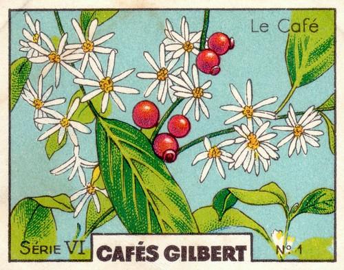 gilbertcafé 2
