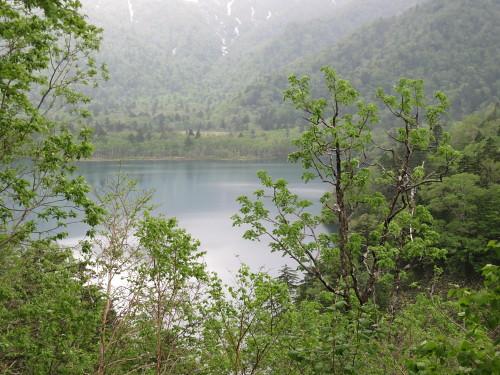 密湖 (5).JPG