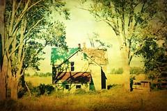 roof ontario texture abandoned farmhouse types dogma lambtoncounty t4l oilsprings 2different maxfwilliams nasos3 robbnorth blaskashroad