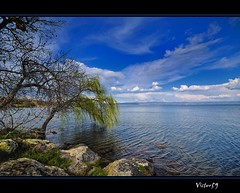 Serendipity (sirVictor59) Tags: blue sky italy white lake reflection water landscape lago topf50 nikon bravo italia nuvole nikond70 blu topv1111 sigma topf300 cielo marta topf150 picturesque acqua topf100 azzurro viterbo topf250 topf200 bolsena lazio riflesso salice 10mm montefiascone naturesfinest capodimonte lagodibolsena abigfave gradoli valentano sanlorenzonuovo aplusphoto infinestyle frhwofavs platinumheartaward great123 natureselegantshots magicdonkeysbest sirvictor59 goldenheartaward grouptripod saariysqualitypictures weirenasfaves ☆thepowerofnow☆