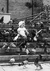 girl among pigeons (DominikaBien) Tags: people bw bird girl birds kids canon children blackwhite kid child pigeon pigeons steps poland sandomierz canon450d