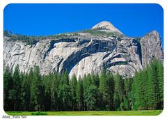 USA-Trip_2004-57 (Dhowayan (Abu Yara)) Tags: california scenery yosemite napa sanfransisco yosemitepark usatrip2004