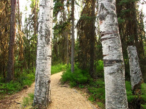 SRBC Trail