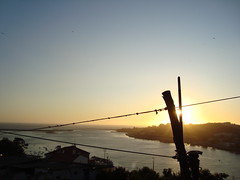 strings at sunset (ii) (...storrao...) Tags: sunset river porto douro storrao sofiatorro
