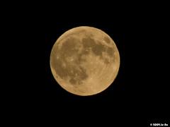 La Lune du 05/08/2009 (Le No) Tags: moon lune 31 hautegaronne midipyrnes stlon lauragais fz18