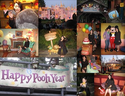 7 Jan 07 Disneyland Pooh