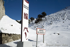 IMG_8106 (Miguel Angel Mora (GSi_PoweR)) Tags: espaa snow andaluca carretera nieve nevada sunday bosque granada costadelsol domingo maroma mlaga mountainroad meteorologa axarqua puertomontaa zafarraya sierraalmijara caosalcaiceria