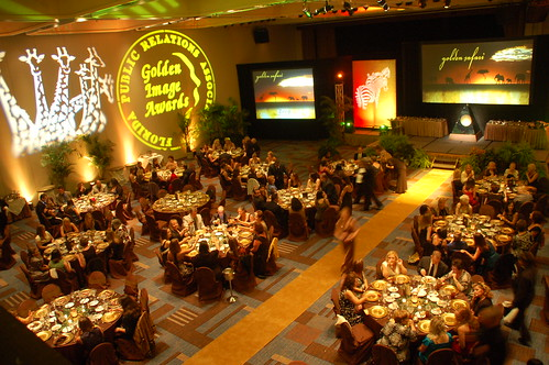 2009 Golden Image Awards (12)