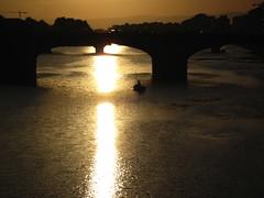 Golden Light, Florence, Italy (Geraldine Curtis) Tags: italy boat florence goldenlight