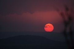 serengeti sunset (felt_tip_felon) Tags: africa sunset red orange silhouette landscape tanzania serengeti abigfave