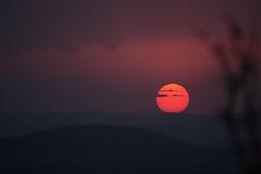 serengeti sunset (felt_tip_felon) Tags: africa sunset red orange silhouette landscape tanzania serengeti abigfave