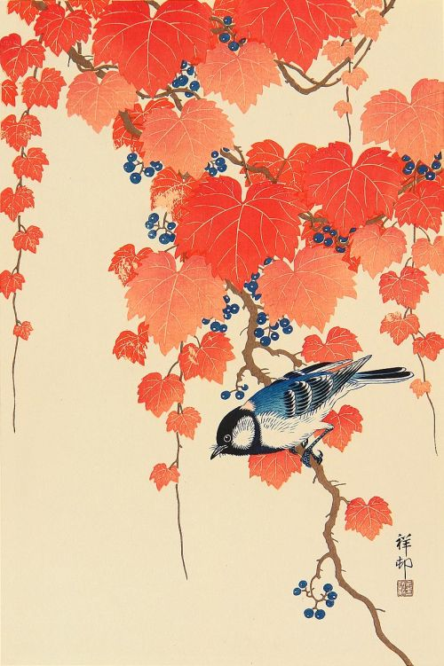 bird with red ivy..