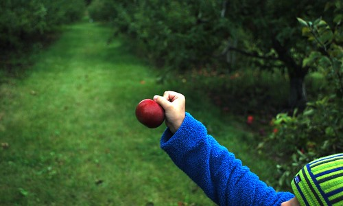 an apple for you