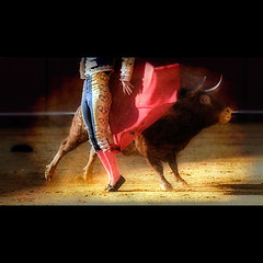 Fiesta (Sator Arepo) Tags: barcelona art sevilla ole olympus veronica toros forever 169 zuiko corrida bullfighting capote cossio tauromaquia toreo montera maestranza trajedeluces e330 uro ec14 50mmmacroed salvadorcortes gettyimagesspainq1