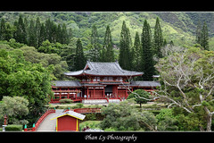 IMG-8695 Hawaii (熊.陈美芬.Phan Ly Photography.On/Off) Tags: photography hawaii bravo downtown explore favs excellence naturesfinest canon30d supershot top20colorpix golddragon platinumphoto anawesomeshot impressedbeauty citrit overtheexcellence goldstaraward goldenheartaward vosplusbellesphotos