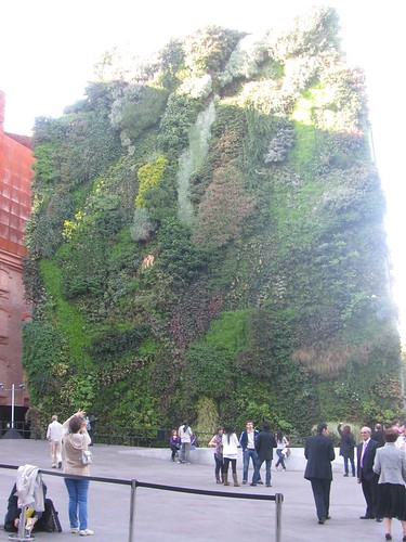 Vertical garden by Patrick Blanc outside Caixa Forum Madrid.