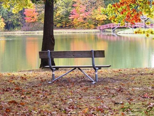 An October Rest